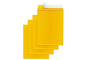 Self-Seal Catalog Envelopes, for Mailing, Organizing and Storage, Golden Brown Kraf 1