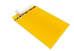 Self-Seal Catalog Envelopes, for Mailing, Organizing and Storage, Golden Brown Kraf 2